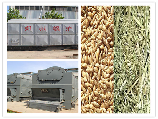 Biomass Boiler for Food Processing Applications