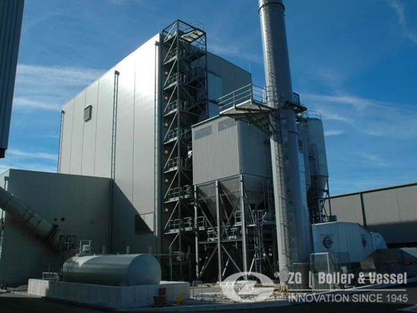 biomass for power plant project