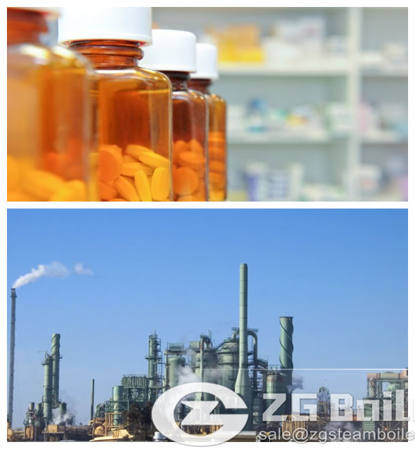 Industrial Wood Boilers for Pharmacy Industry