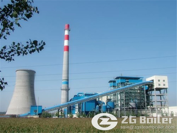 Biomass Boiler for Power Station